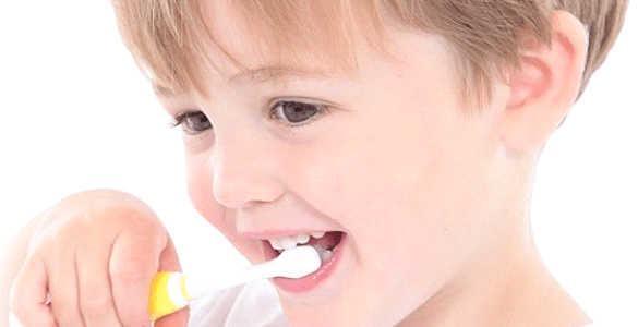 Brush-Baby Baby Sonic Electric Toothbrush Review